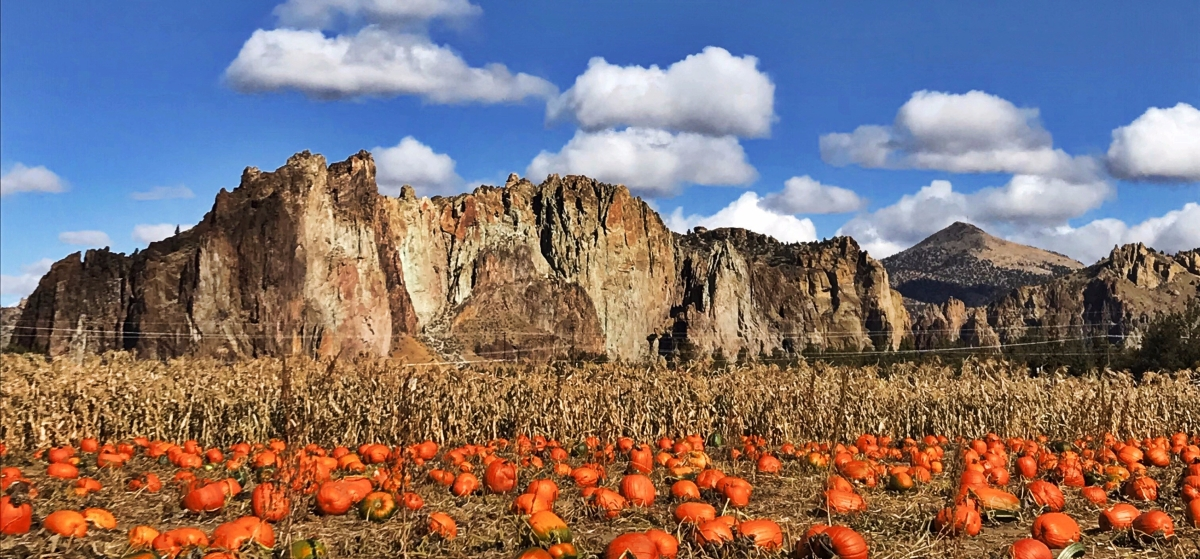 Smith Rock  Ranch Pumpkin Patch 2017