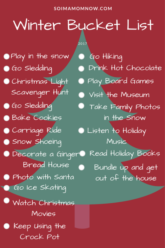 Winter Family Bucket List